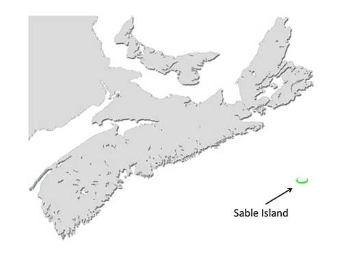 Sable Island Horse Map
